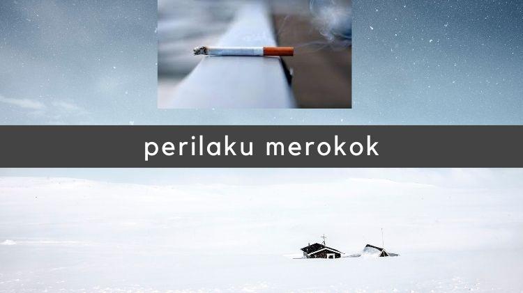 Perilaku Merokok Penduduk Indonesia