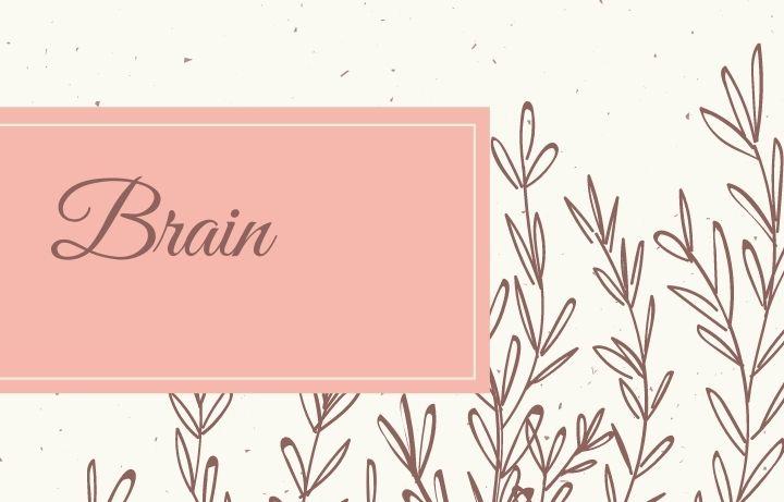 Belajar Melibatkan Otak Kiri dan Kanan Secara Simultan