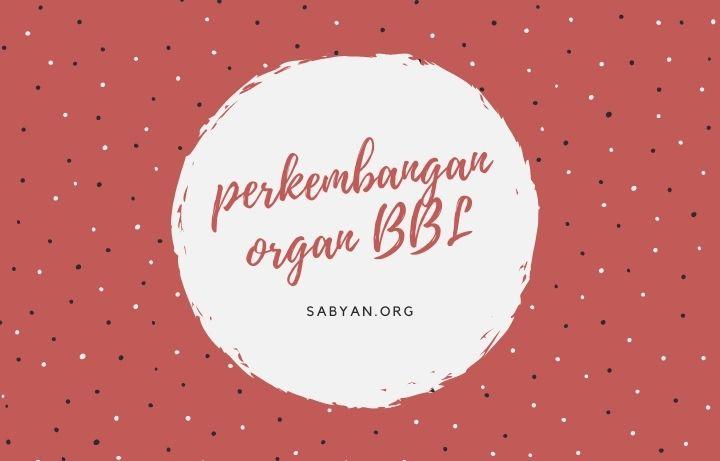 Perkembangan Organ Indra Bayi Baru Lahir